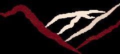 cropped-logo-NY-1.png