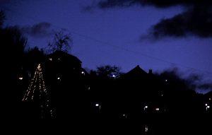 """Eit privat """"joletre"""" lyser opp i Flisabakken. Foto: Johannes H. Sekse"""
